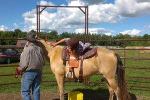 Als Wwoofer darf man auch beim Einreiten von Pferden helfen