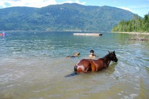 Kanu fahren oder mit Pferden schwimmen in Kanada