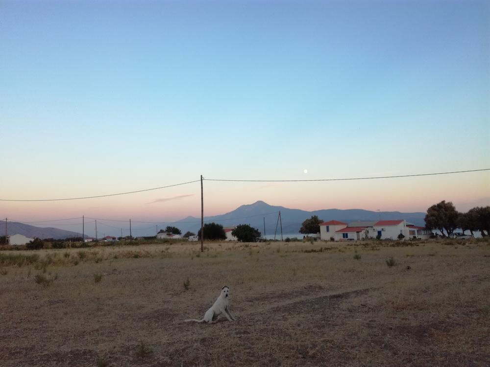 Archipelagos Samos