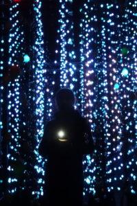 Botanischer Garten Lichterschauer in Edinburgh