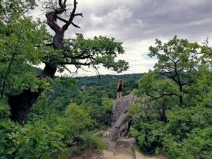 Fotoparade Die schönsten Urlaubsfotos Landschaft