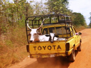 Transport in Afrika