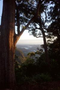 Morgenstimmung und Ausblick von der Binna Burra Lodge auf den Lamington Nationalpark.