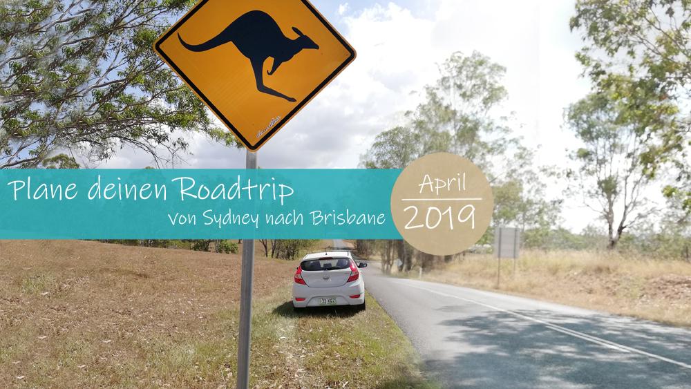 Roadtrip von Sydney nach Brisbane, Ostküste Australien
