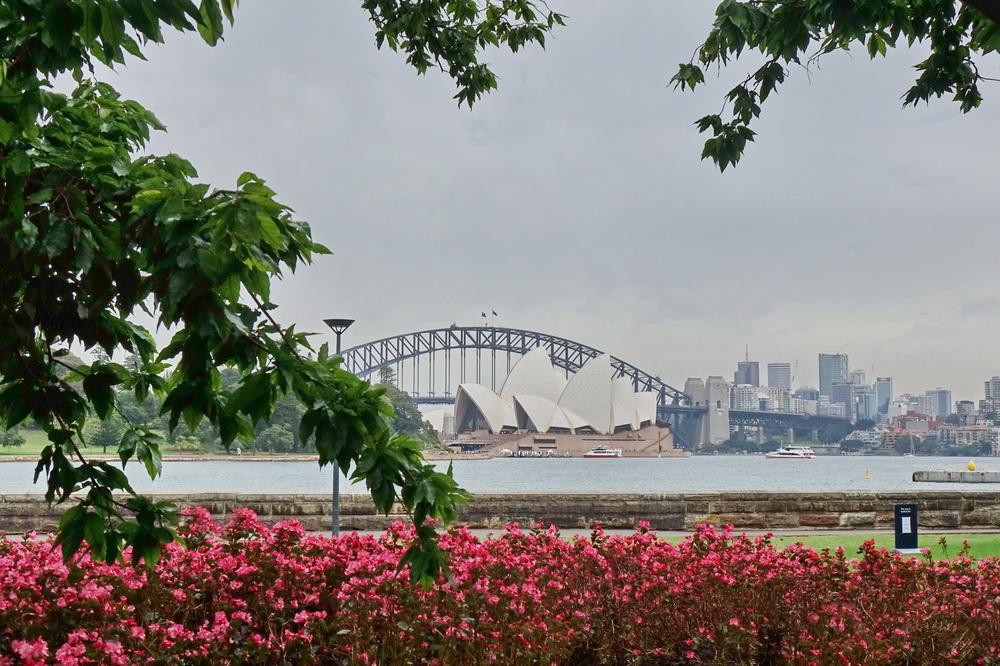 Sydney Opera House vom botanischen Garten aus.