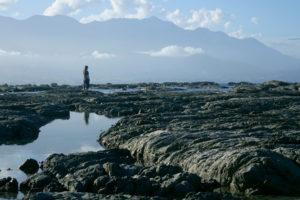 Kaikoura wo die Berge auf das Meer treffen