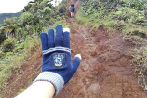 Handschuhe erleichtern das Klettern